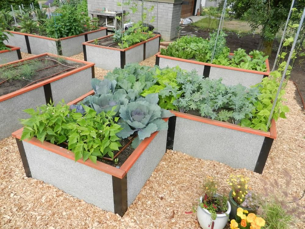 309e9279421a461478d8678a292f123d - Why Use Raised Beds For Gardening