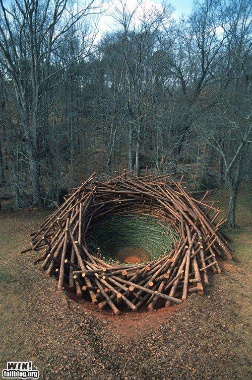 That's a pretty big bird's nest