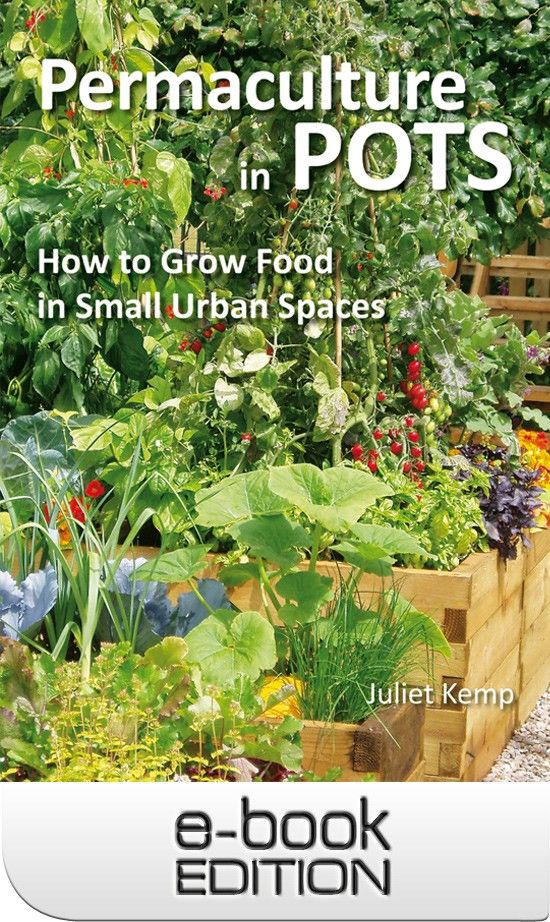 Permaculture in Pots - Ebook Edition Permaculture Pinterest