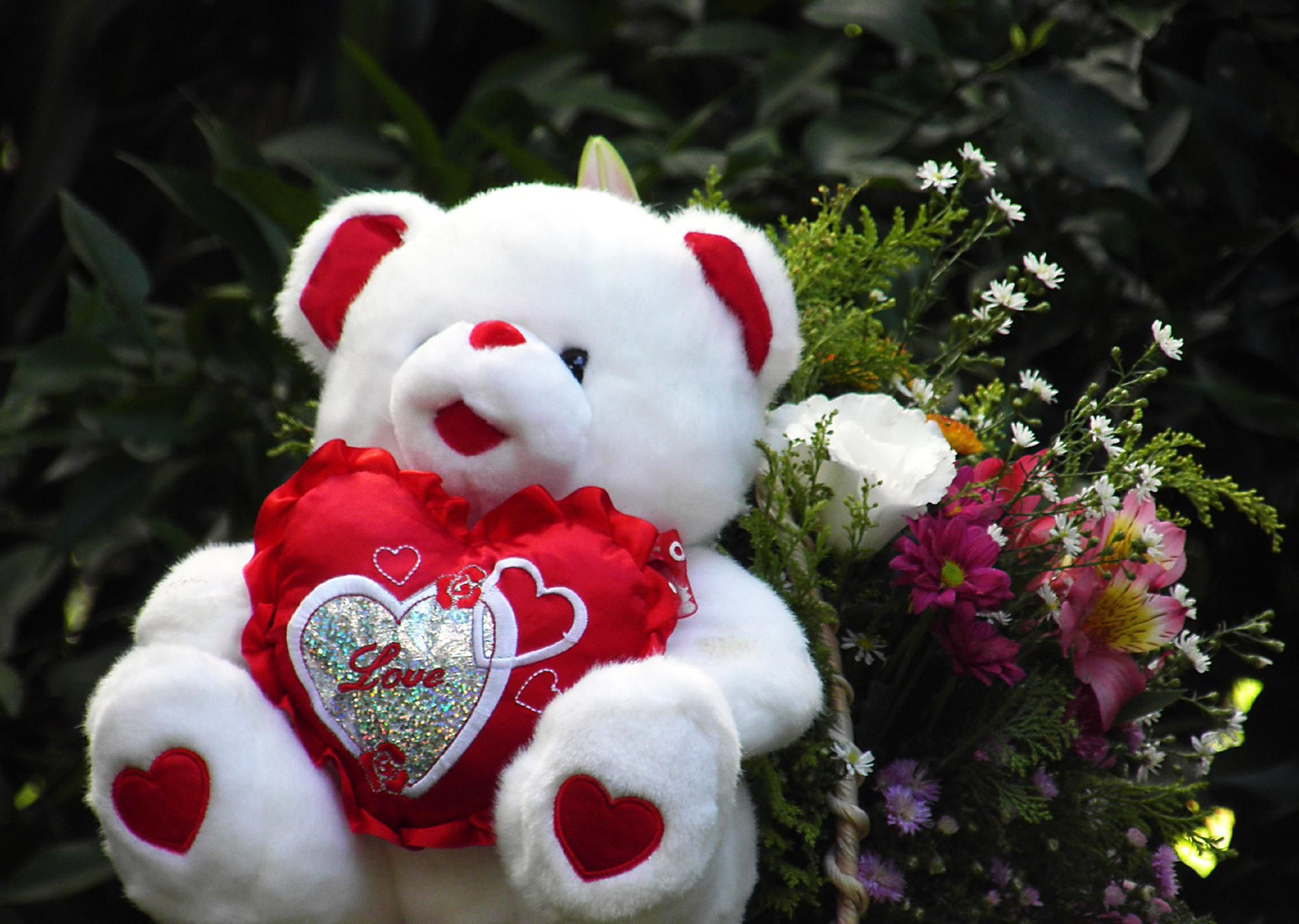 Hd Lovely Teddy Bear Wallpaper Peluches Teddy Bear Cute Teddy