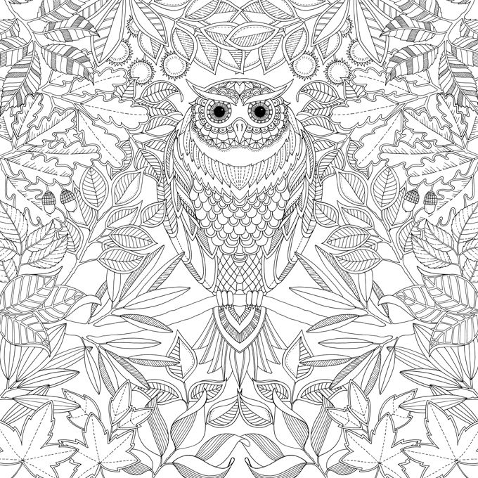 Johanna Basford Creates Enchanting Adult Coloring Books