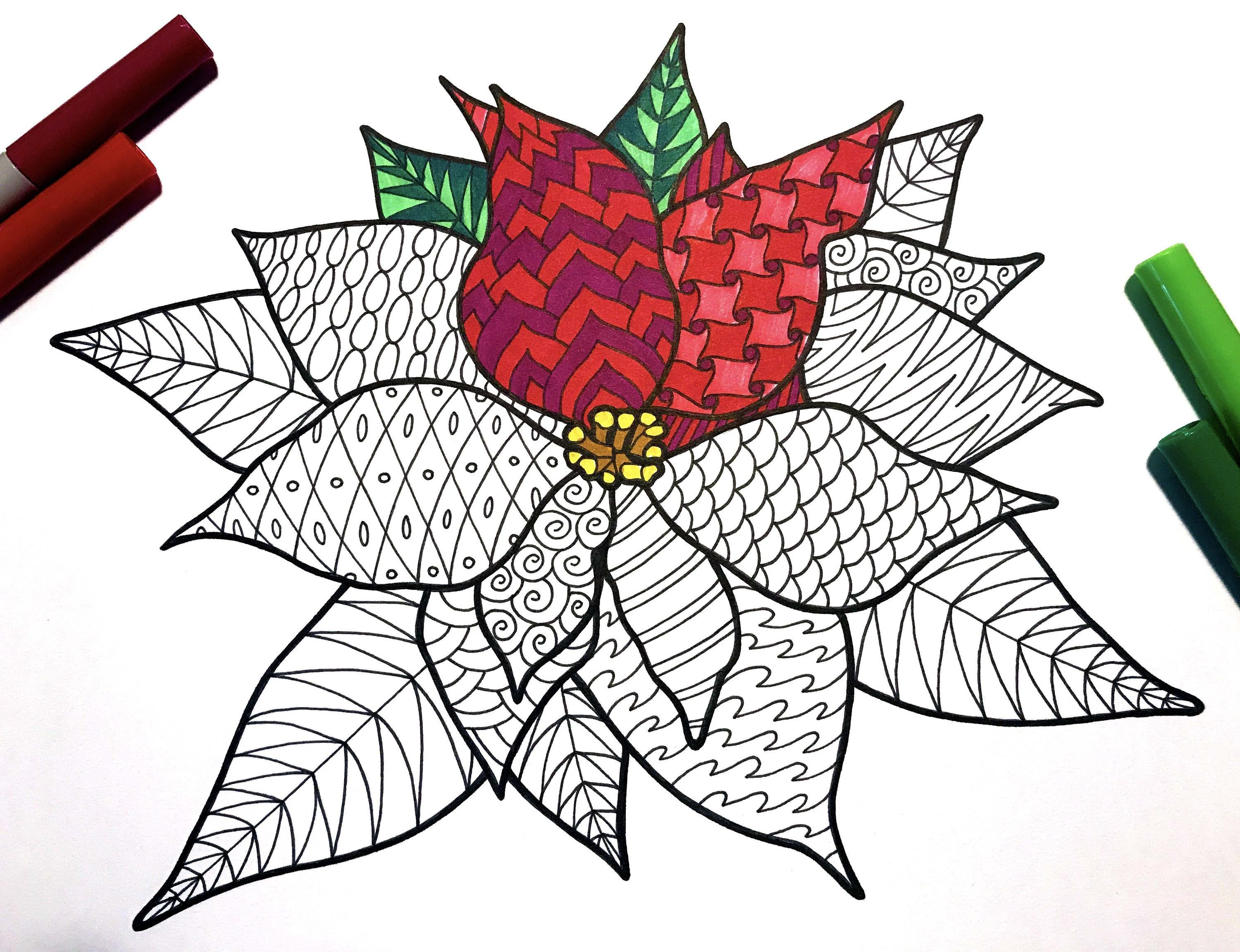 Poinsettia PDF Zentangle Coloring Page Zentangle