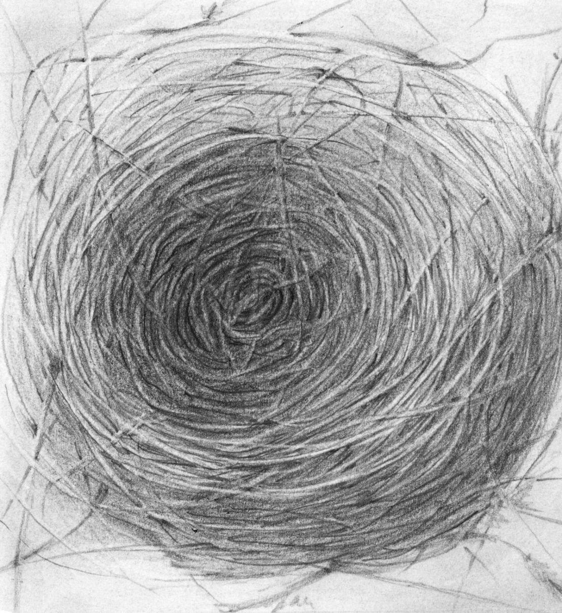 Nest Egg Bird, not necessarily in thatorder