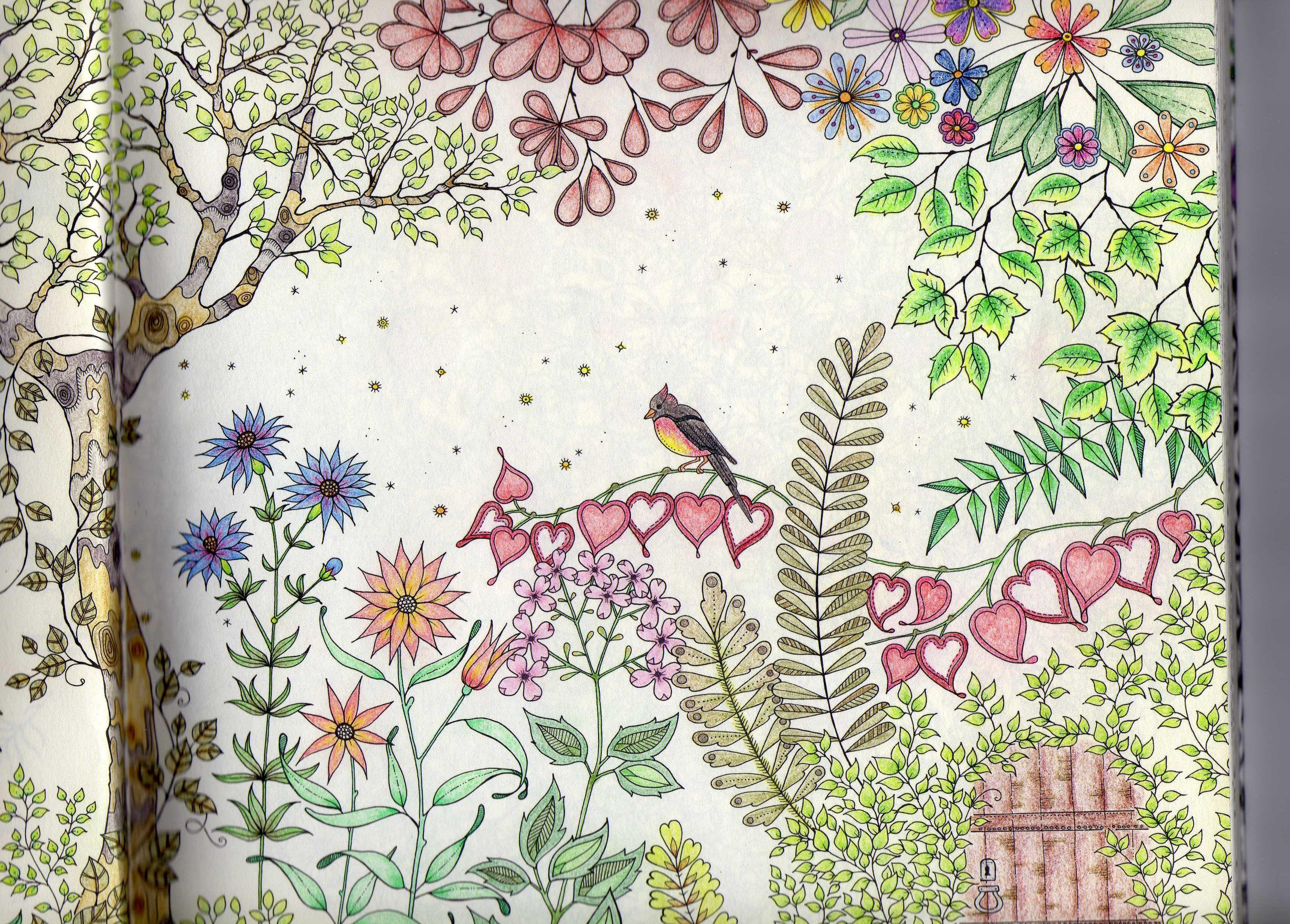 Boek de geheime tuin blz 2 mijn geheime tuin for De geheime tuin boek