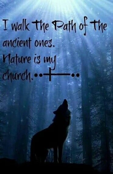 Pin by Bobbi Meredith on Craft | Lone wolf quotes, Wolf