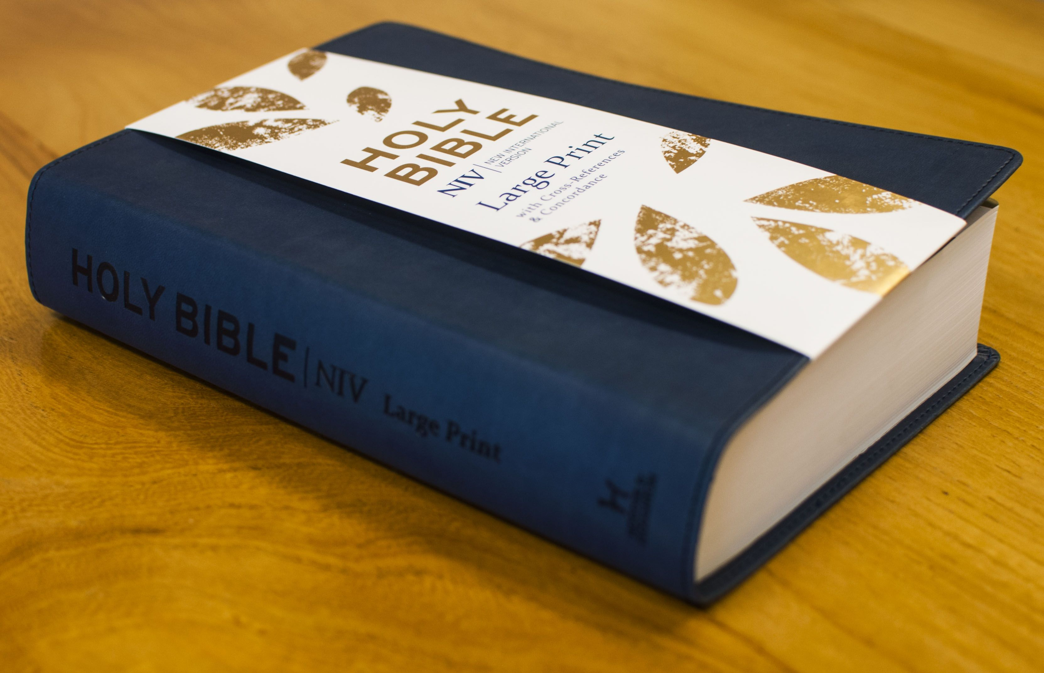 Niv large print bible with 12pt single column text cross niv large print bible with 12pt single column text cross references and negle Image collections