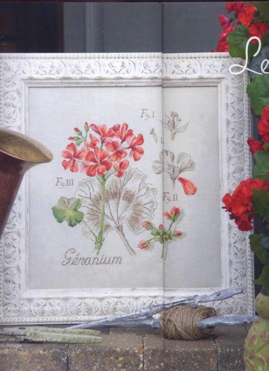 3/3 Geranio | punto de cruz 2 - flores | Pinterest | Geranios, Punto ...