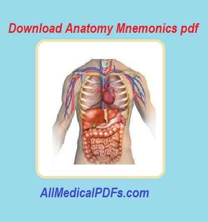 Anatomy Mnemonics pdf | All Medical PDFs | Pinterest | Anatomy and Pdf