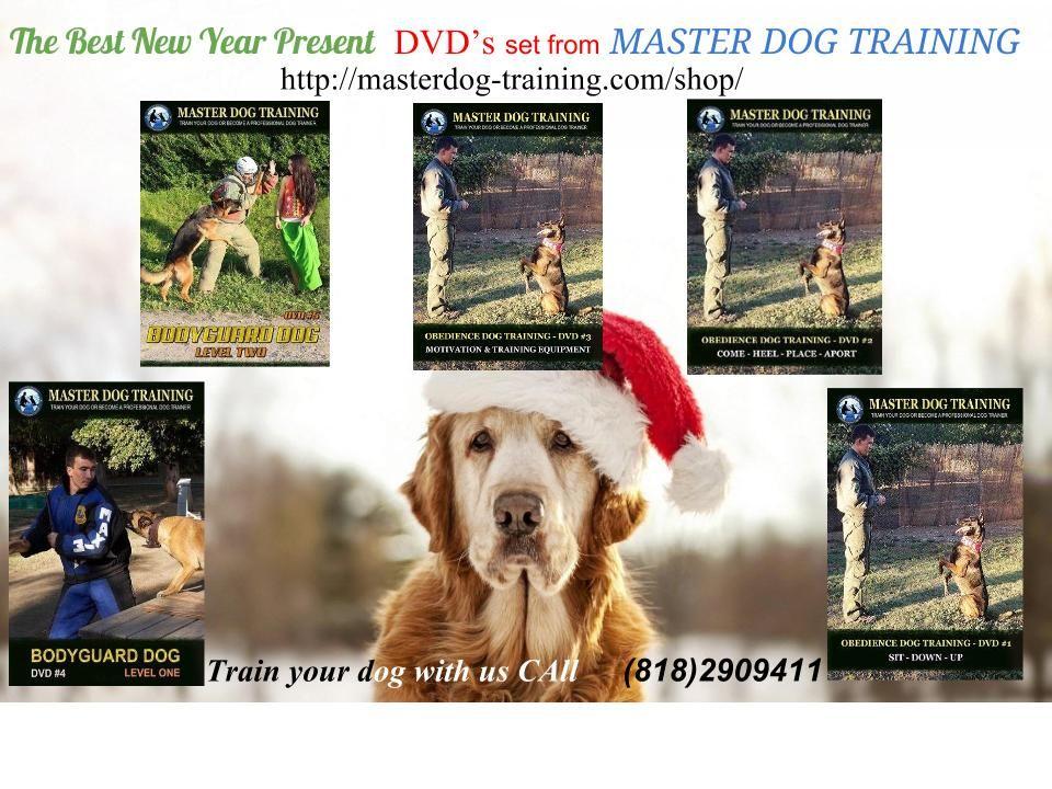 THE BEST PRESENT http://masterdog-training.com/shop/
