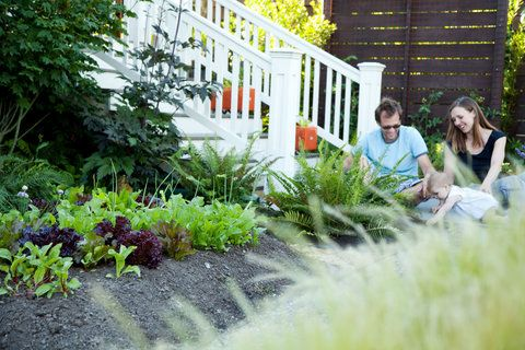 Edible Landscaping Ideas For Front Yard Edible 400 x 300