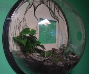 WALL SPHERE TERRARIUM (easy, recycled, fast, cheap!)
