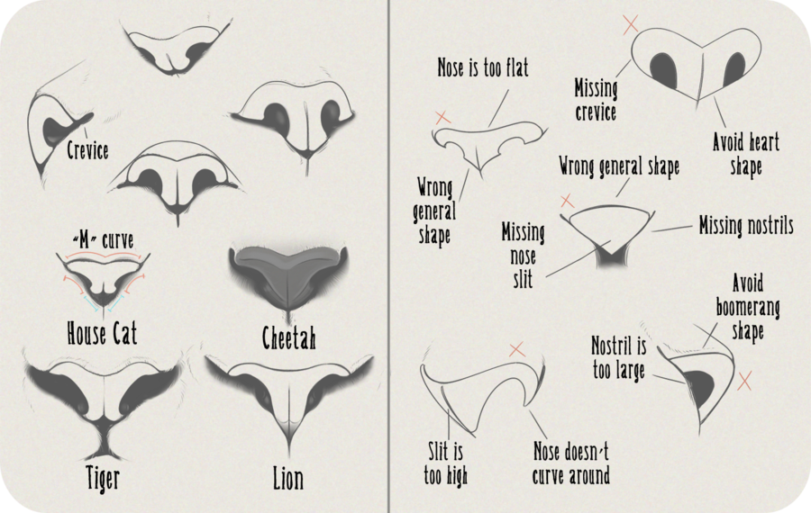 Realistic Feline Nose Tutorial by Anti-Dark-Heart.deviantart.com on ...