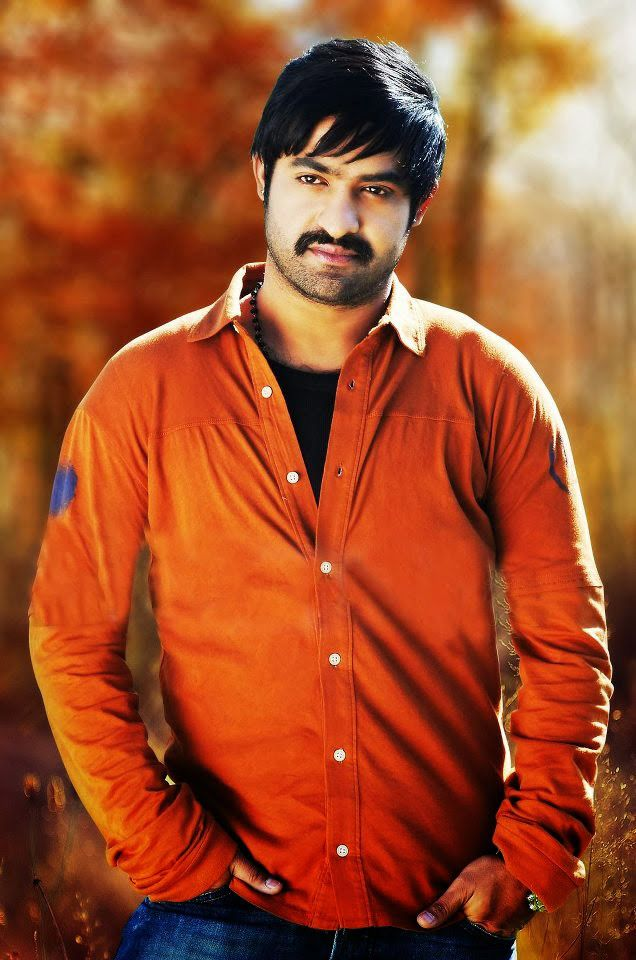 Download Junior Ntr Latest Ultra Hd Wallpapers Every Alerts 800532
