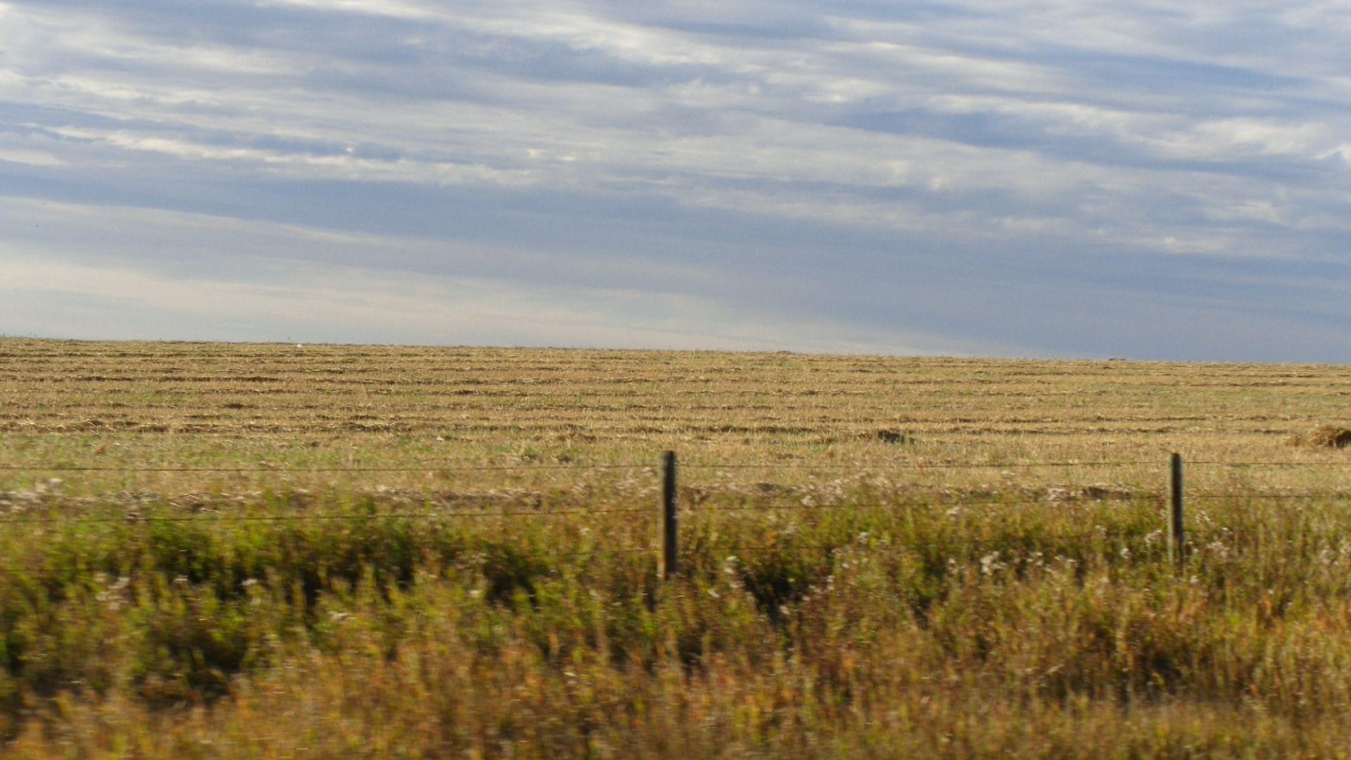 Springbank, Alberta Canadian prairies, Farmland, Outdoor