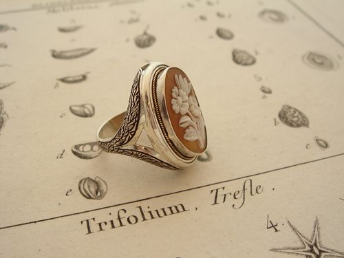 ZORRO - Order Ring - 045