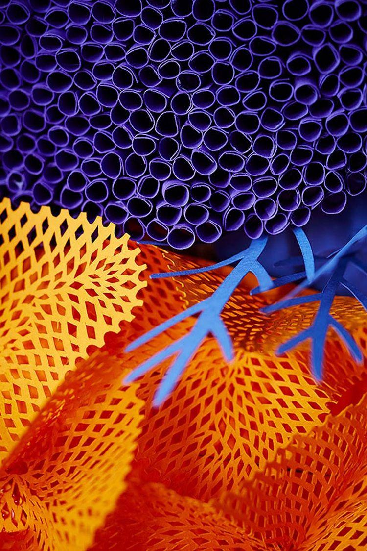 Vibrant Paper Art Sculpture Captures The Diversity Of A Coral Reef Paper Art Sculpture Coral Reef Art Coral Art