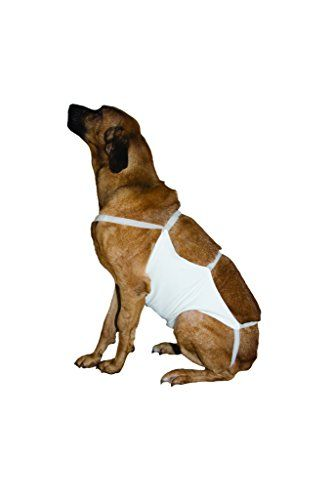 Kruuse Size 7 Rehab Abdominal Bandage 26 X 22 Click On The Image For Additional Details Dog Carrier Cat Cages Dog Supplies Online