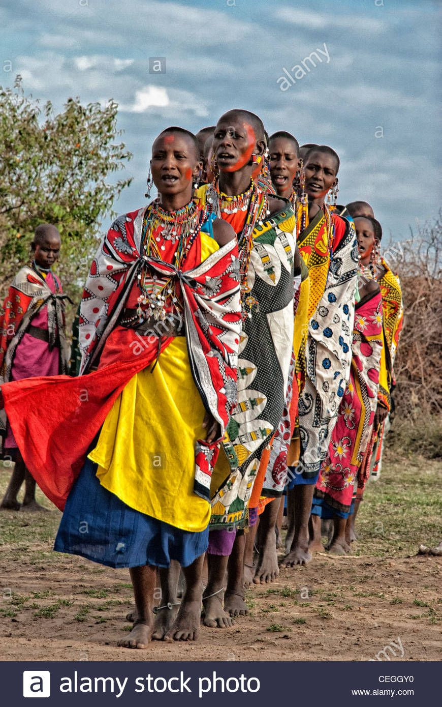 Masai Women In A Line Singing And Doing A Welcome Dance Masai - Maasai tribe wild animals attend wedding kenya