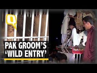 Online Business Operator: Hilarious: Pak Groom Arrive At His Wedding On a Li...