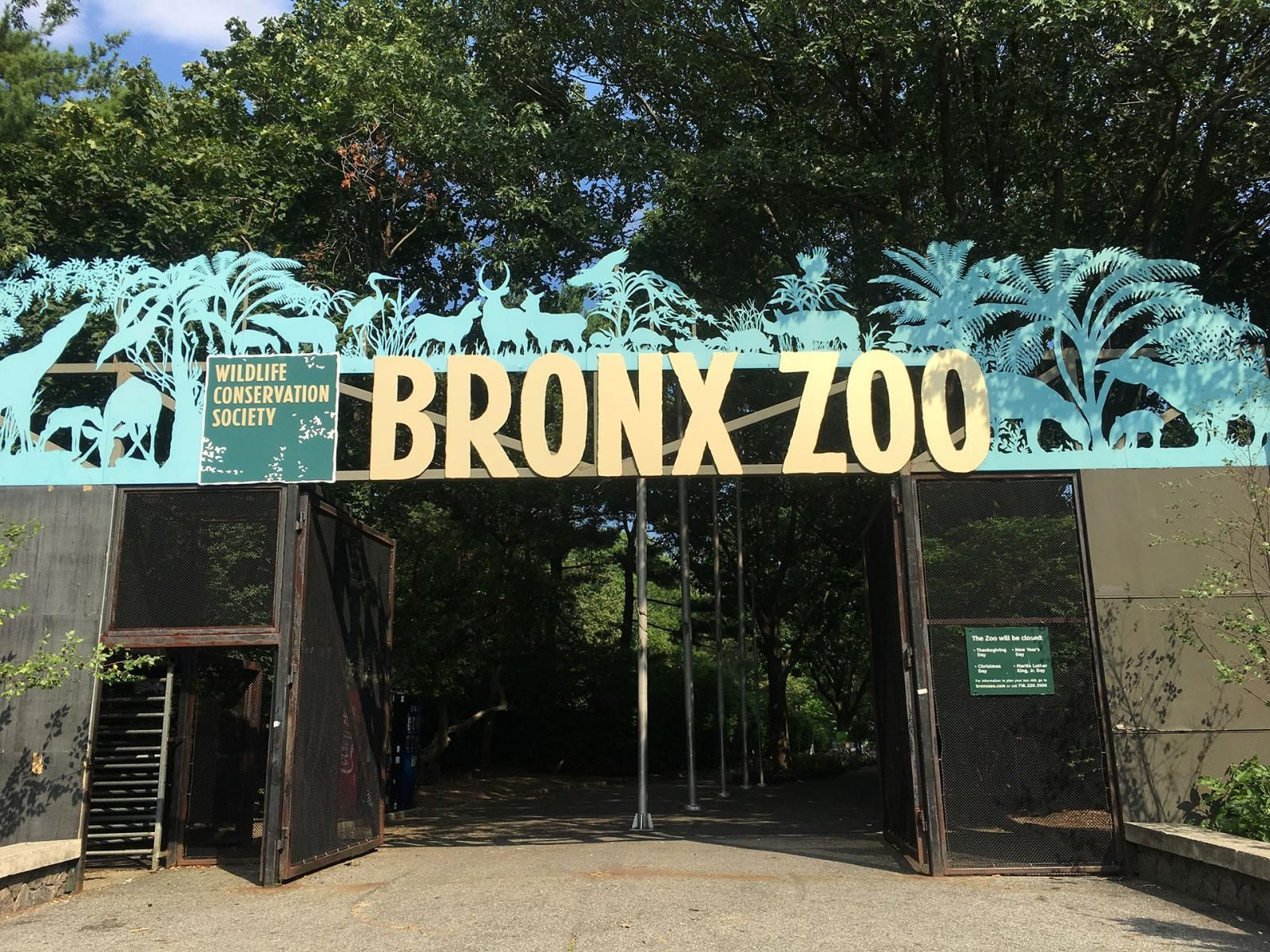 How Do You Get To The Bronx Zoo By Train