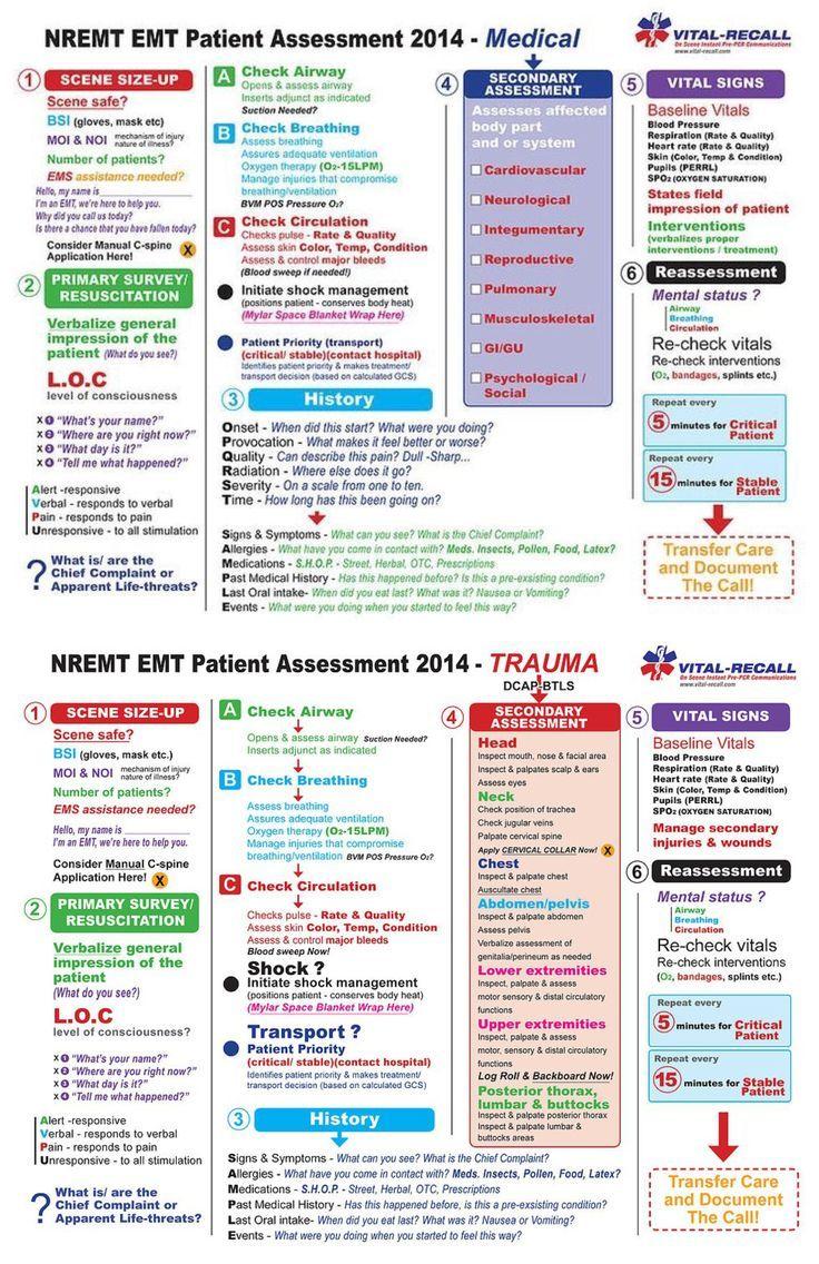 Patient assessment patient assessment