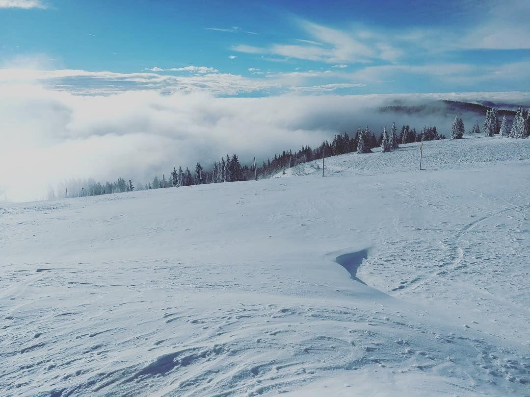 Schnee Auf Dem Feldberg