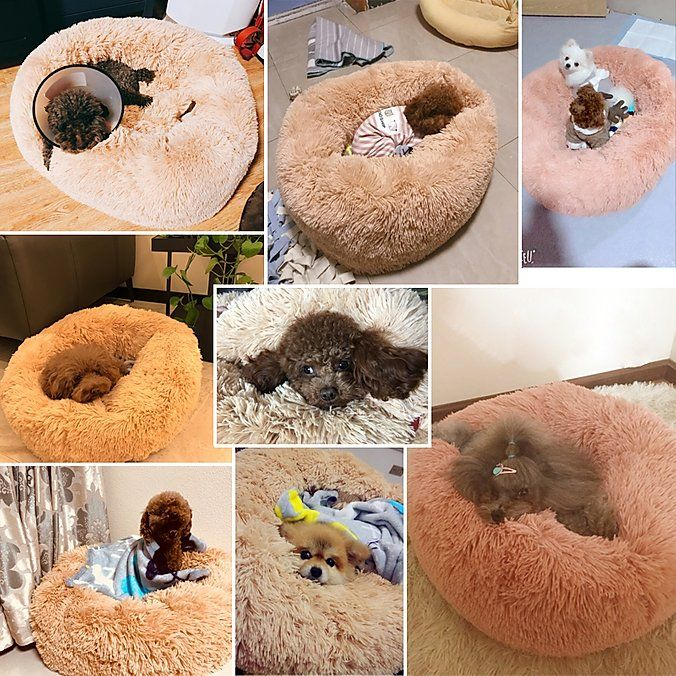 HOME Abbyspace Pet Beds in 2020 Pet beds, Pets, Your pet