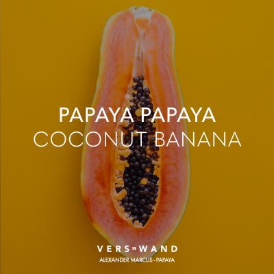 Visual Statements Papaya Papaya Coconut Banana Alexander Marcus Spruche Zitate Quotes Verswand Musik Band Art Verswand Alexander Marcus Papaya