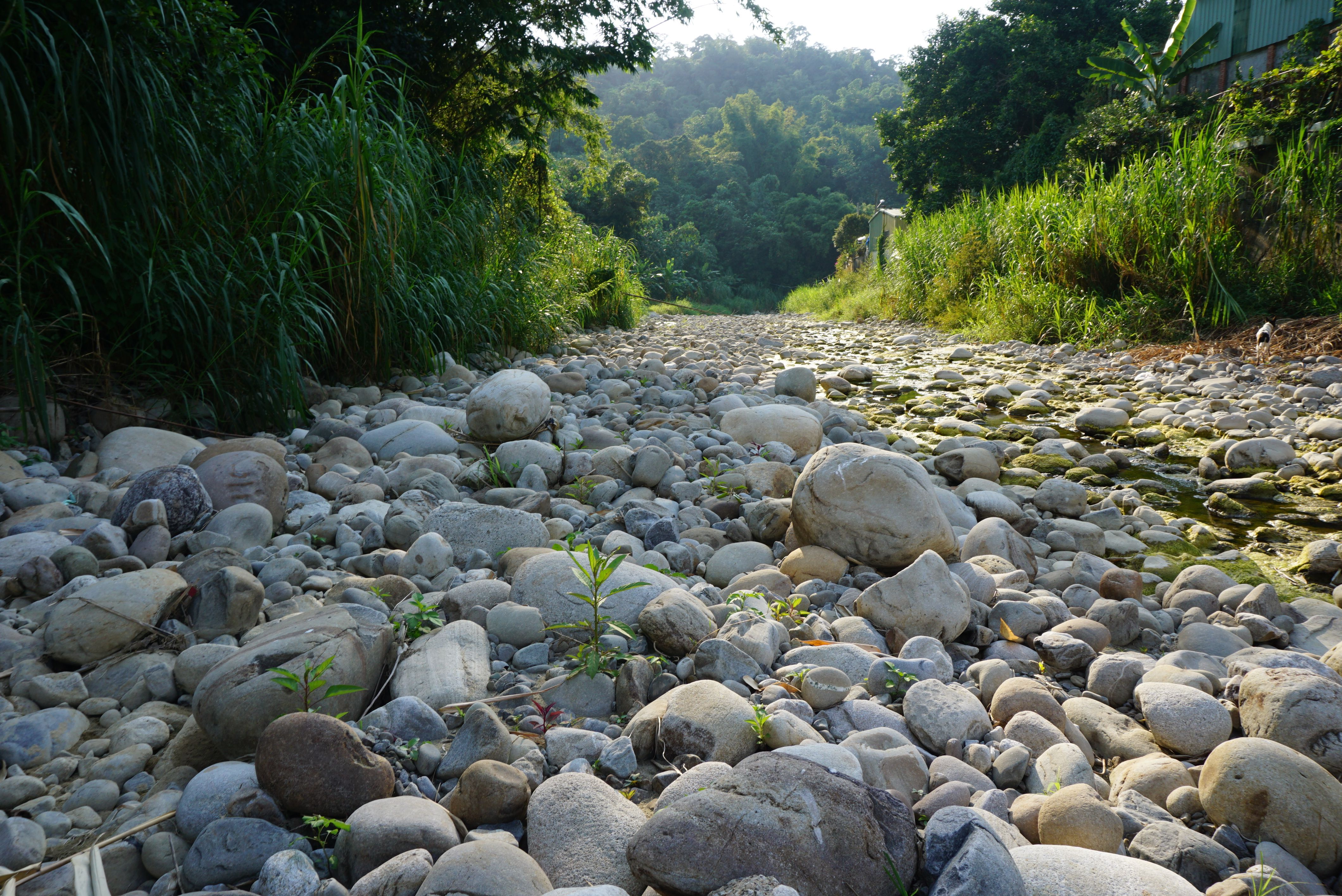 This Is A Small River In Taichung Taiwan It Is Home To