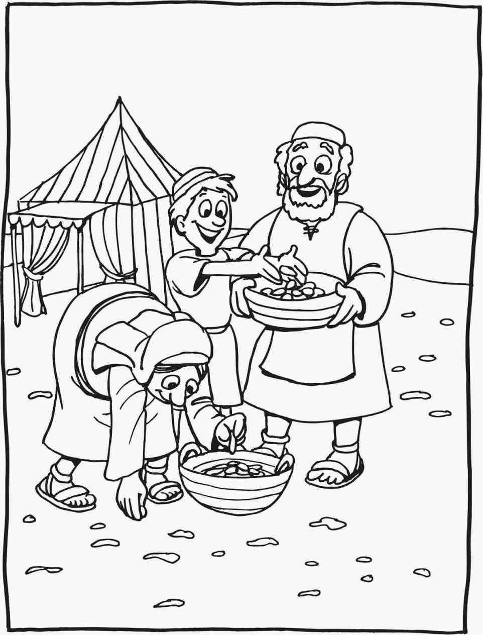 Manna And Quail Coloring Page Web Kwartels