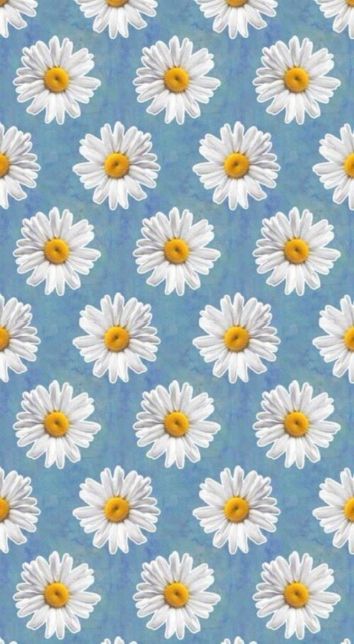 Daisies Daisy Wallpaper Emoji Wallpaper Cellphone Wallpaper