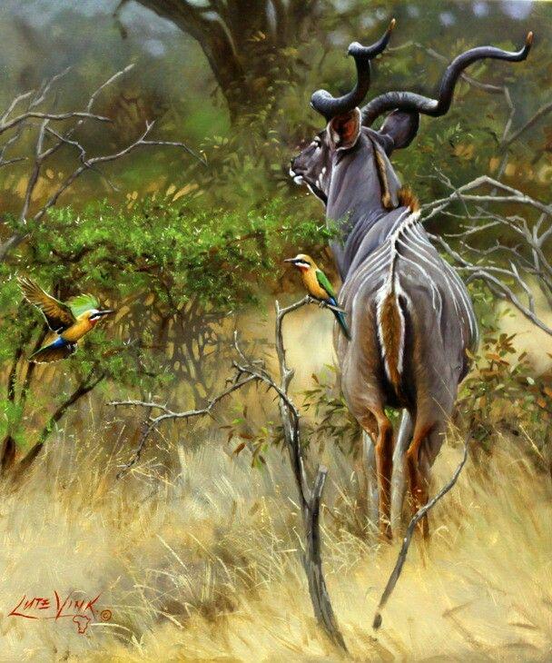 Pin on Wildlife art