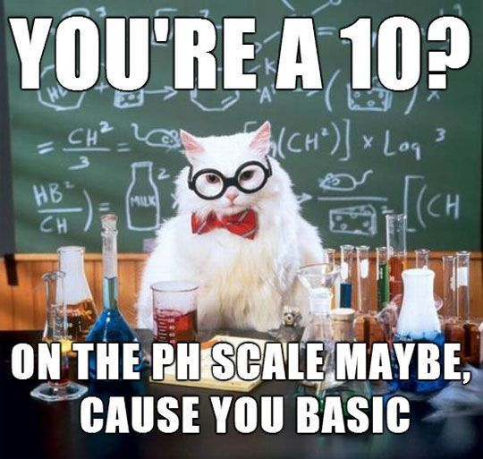 science cat is right and you know it science science