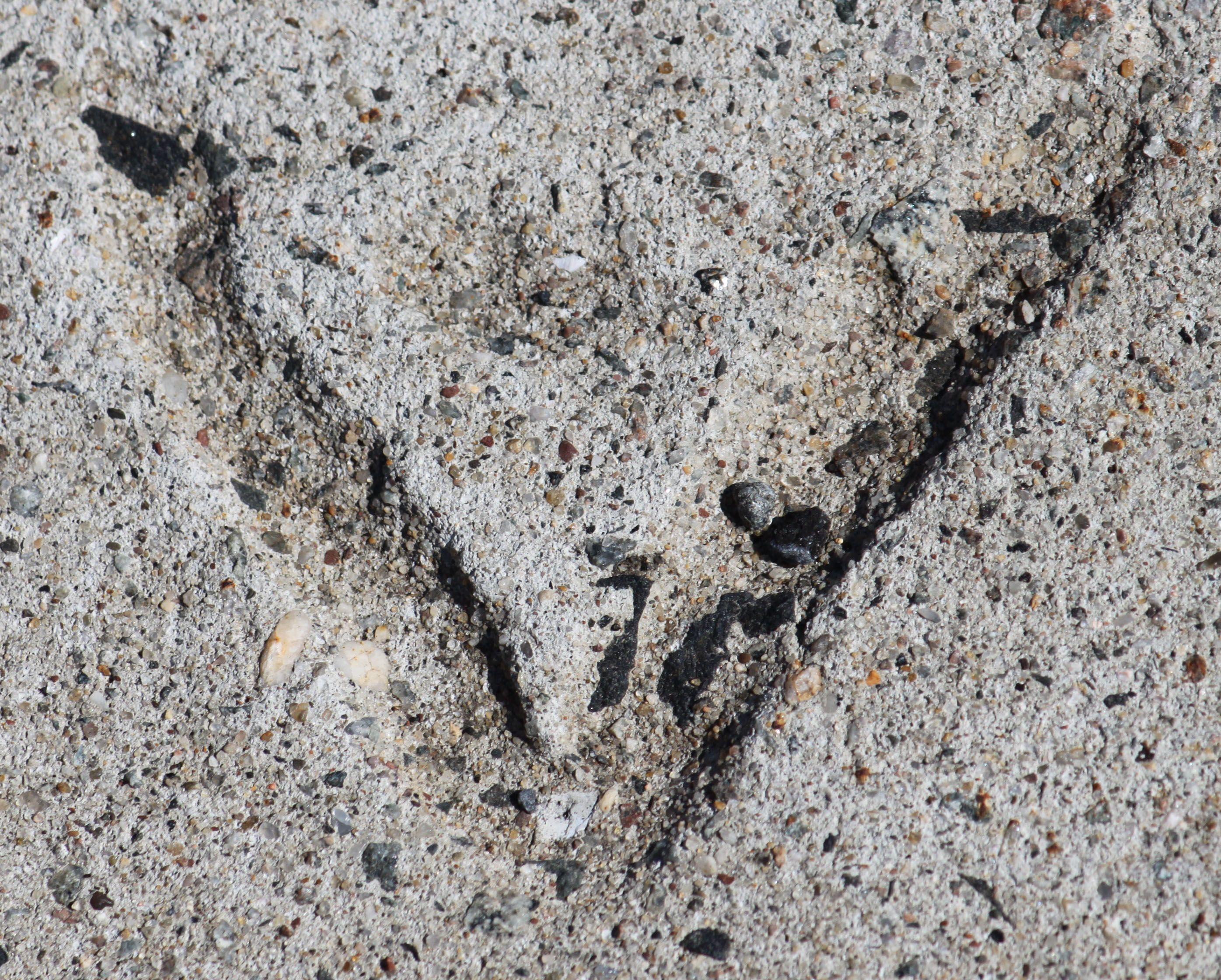 Støbe bogstaver i cementen