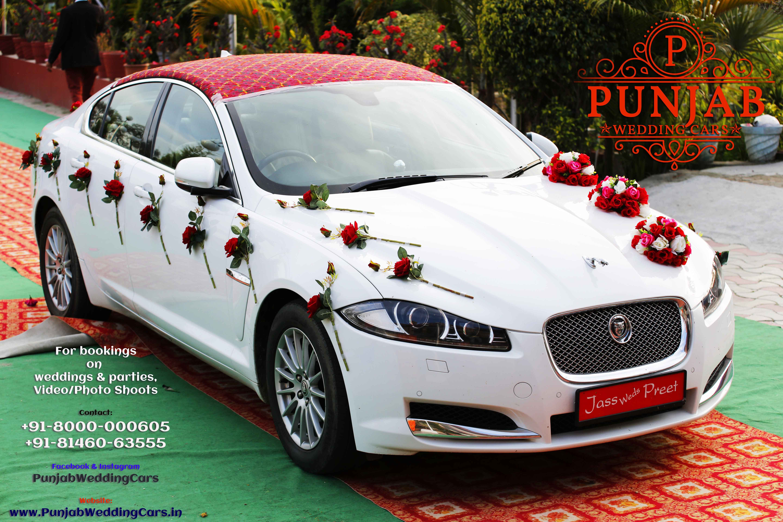 Wedding cars jaguar wedding cars in india punjab patiala jalandhar wedding cars jaguar wedding cars in india punjab patiala jalandhar malerkotla nabha available in chandigarh junglespirit Gallery