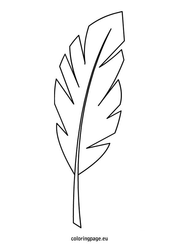 Palm Branch Template Coloring Page Leaf Coloring Page Palm Branch Leaf Coloring