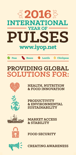 https://www.goift.com/wp-content/uploads/2015/01/2015-cicils-world-pulses-convention-international-year-of-pulses.png