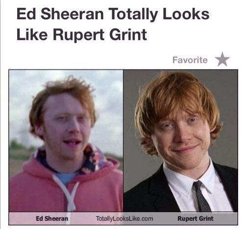 Sarah On Instagram Pubity Was Voted Best Meme Account On Instagram Ed Sheeran Memes Ed Sheeran Book Memes