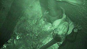 Los hombres lobo aparecen en el último capítulo de Supernatural.