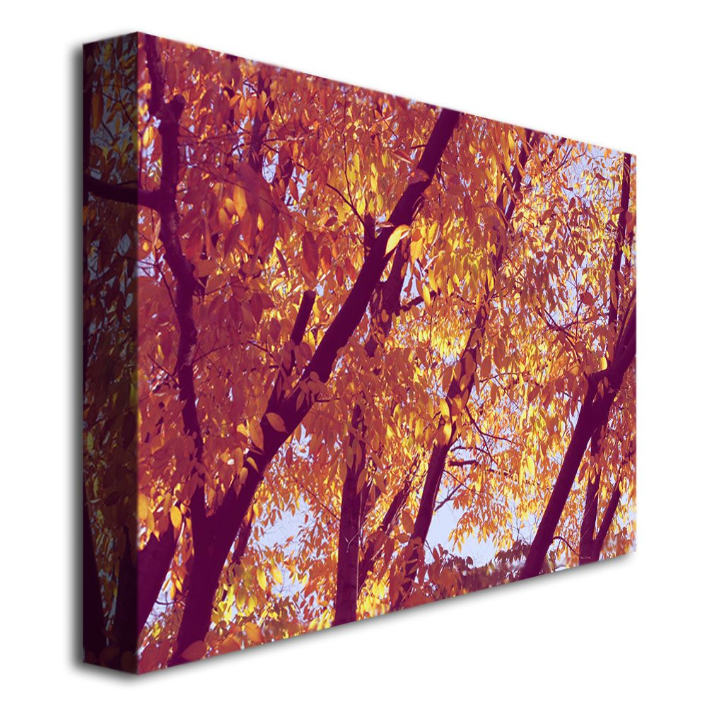 Trademark Fine Art Ariane Moshayedi 'Trees' Canvas Art
