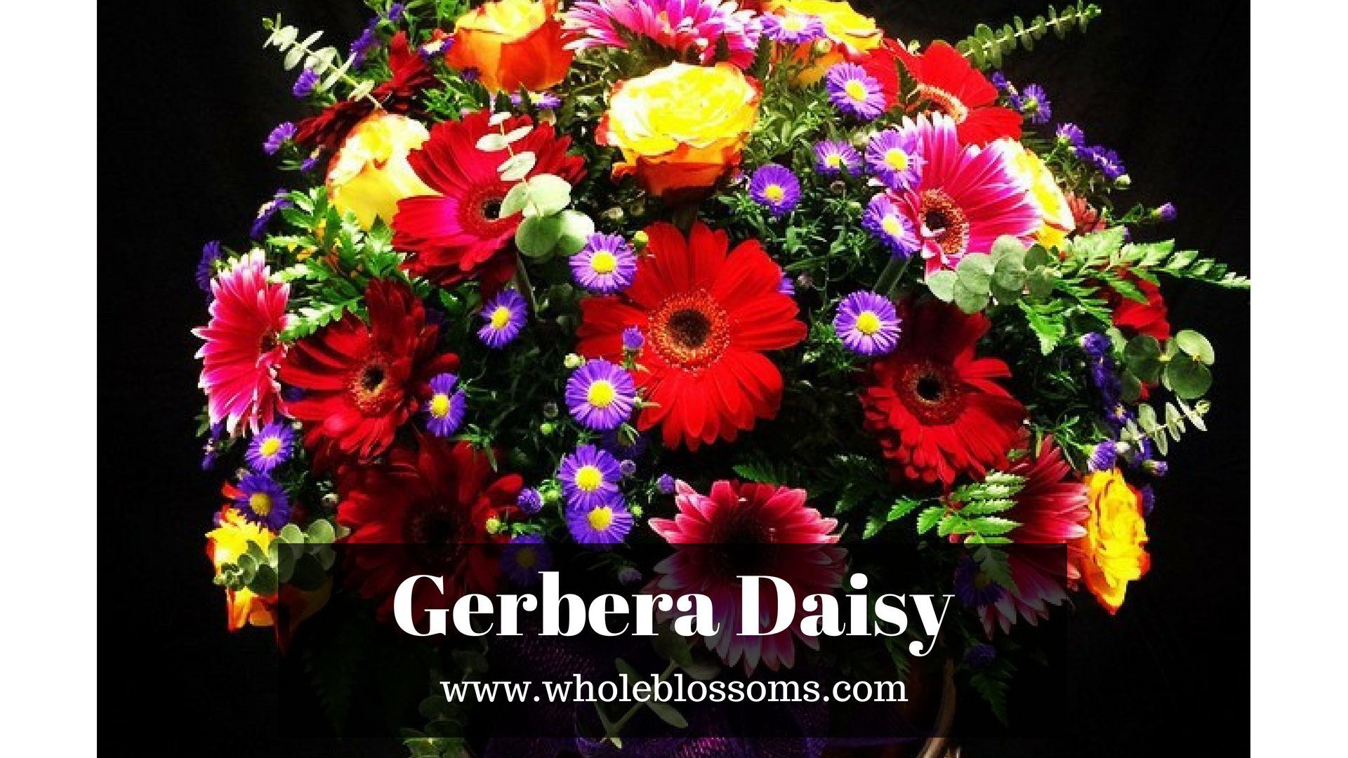 Gerbera daisy flowers look natural when used in decoration you can gerbera daisy flowers look natural when used in decoration you can use gerbera flowers for all type of decoration and it also uses in wedding bouquets izmirmasajfo