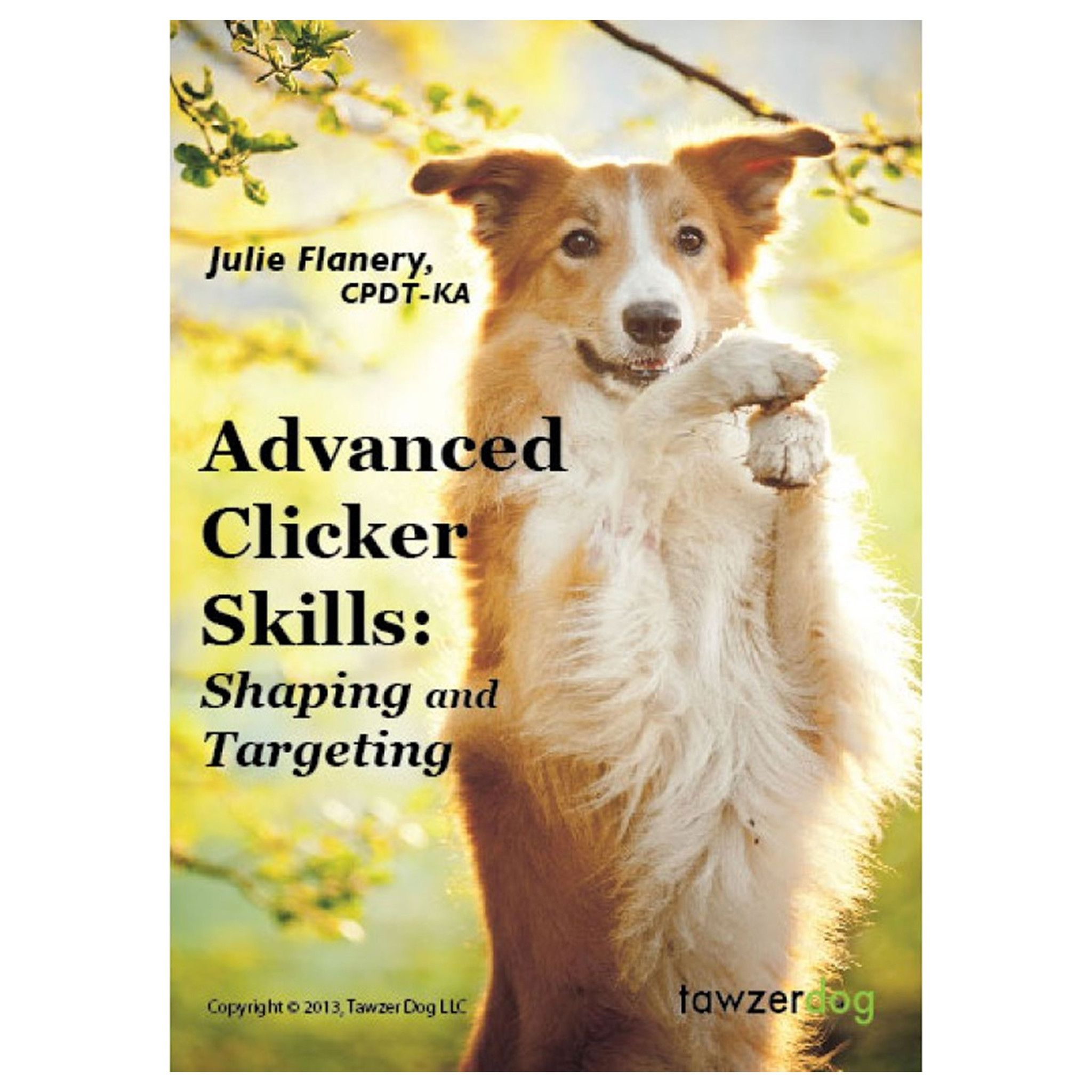 Advanced Clicker Skills Shaping And Targeting Dogs Dog