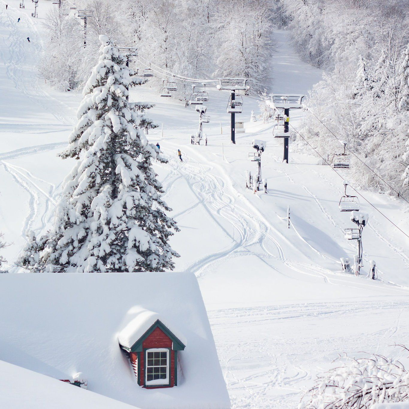 8 Best Vermont Ski Resorts For Every Level And Interest Vermont Ski Resorts Vermont Skiing Ski Resort