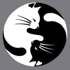 Image Result For Black Cat Drawing Easy Rock Art Pinterest Yin