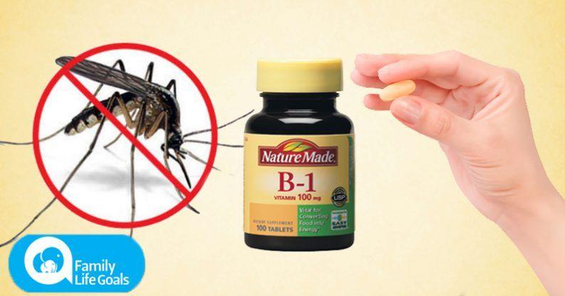 Take Vitamin B1 To Tepel Mosquitos | Healthy Lifestyles ...