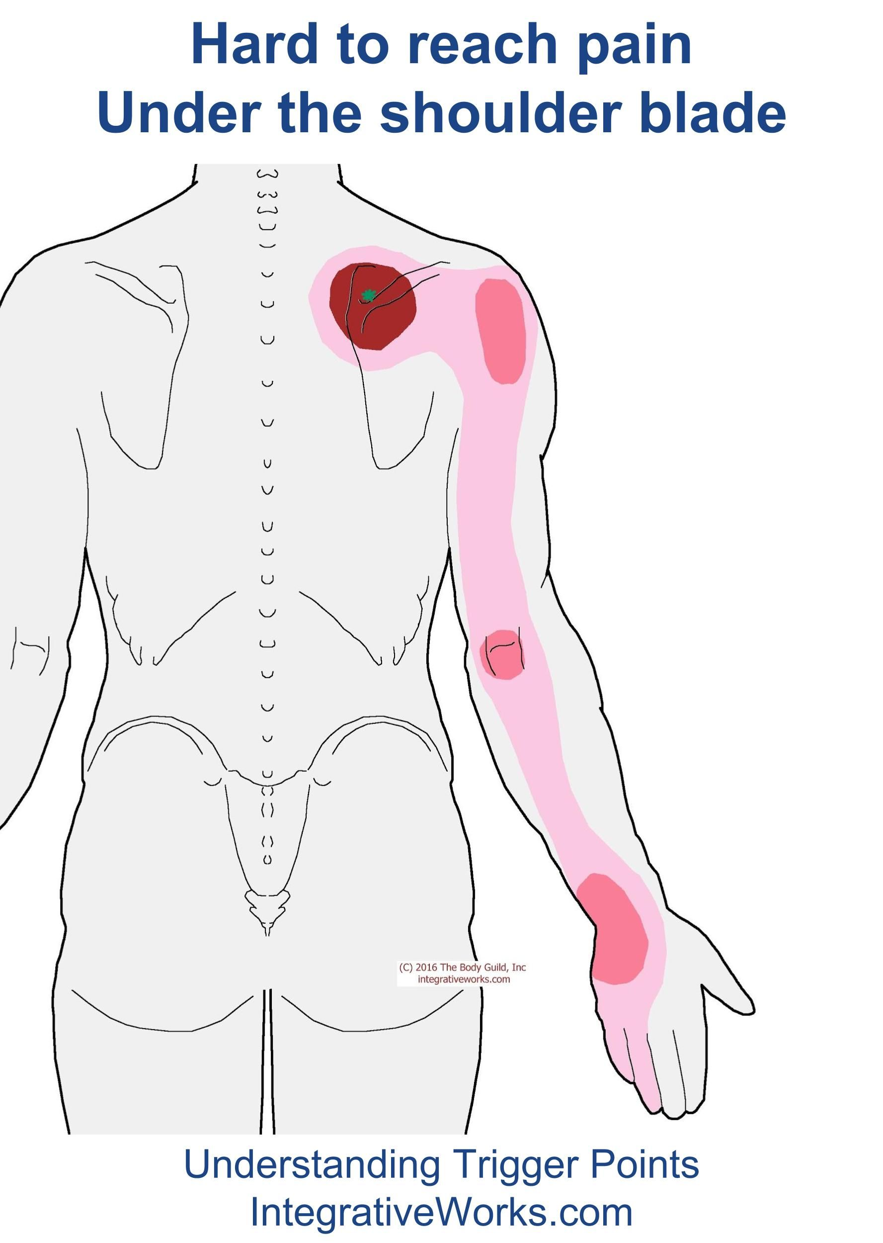Pain under the scapula on the left behind: possible causes