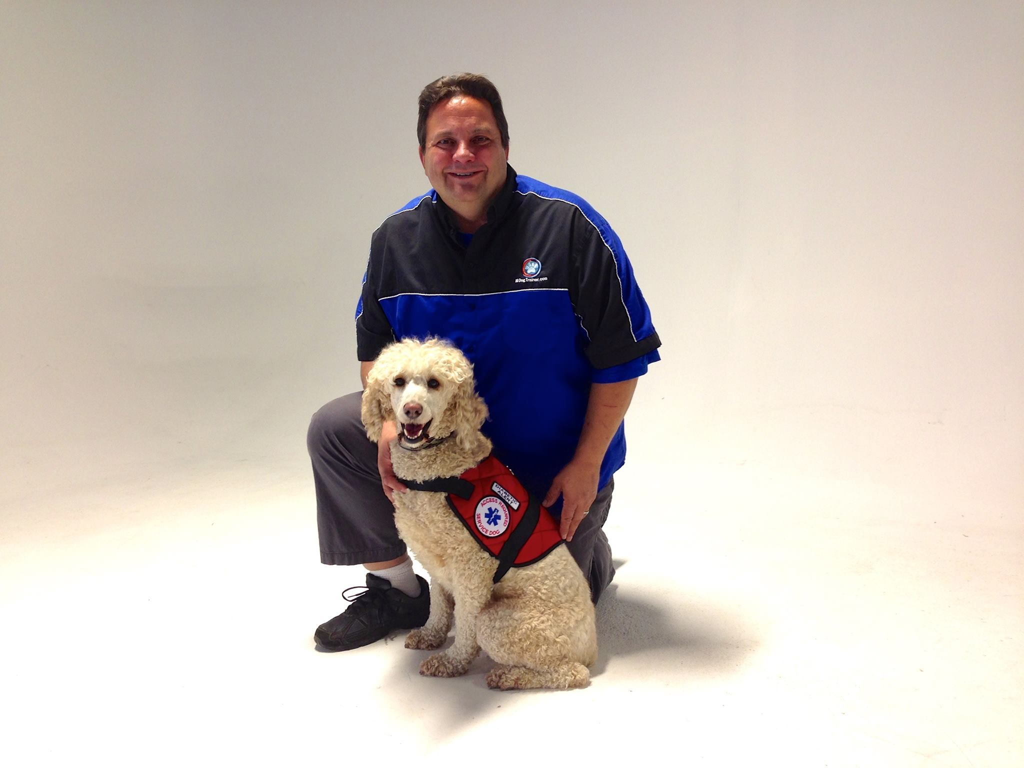Service Dogs Diabetic Alert Dogs Michigan Dog Training