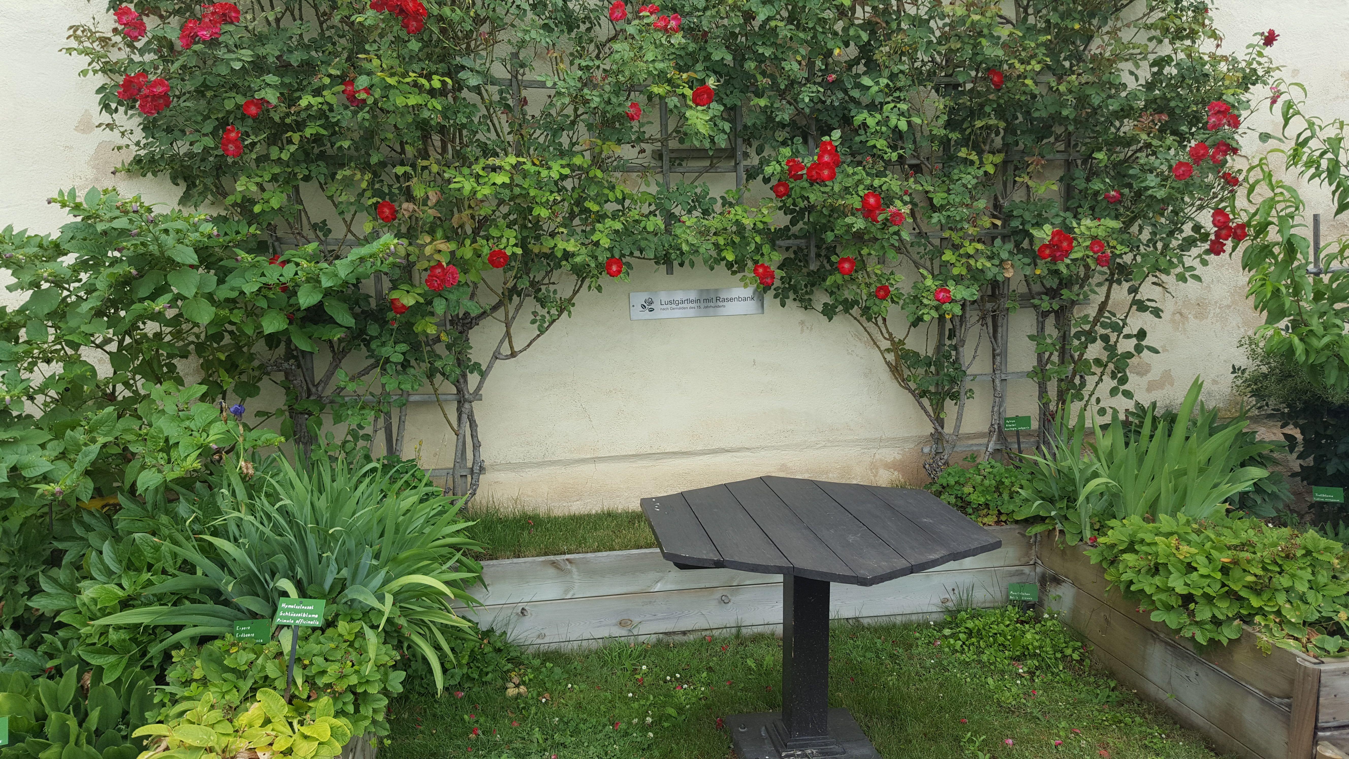 Lustgarten Marksburg, die Gärten wurden erst in 1960ern auf dem Wehrgang angelegt.