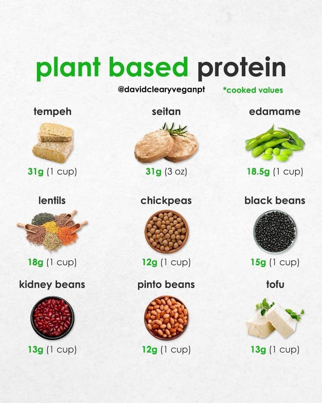 """Vegan Fitness & Nutrition Info on Instagram: """"Where do ..."""