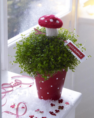 Gastgeber Geschenk Silvester Christmas Ornaments New